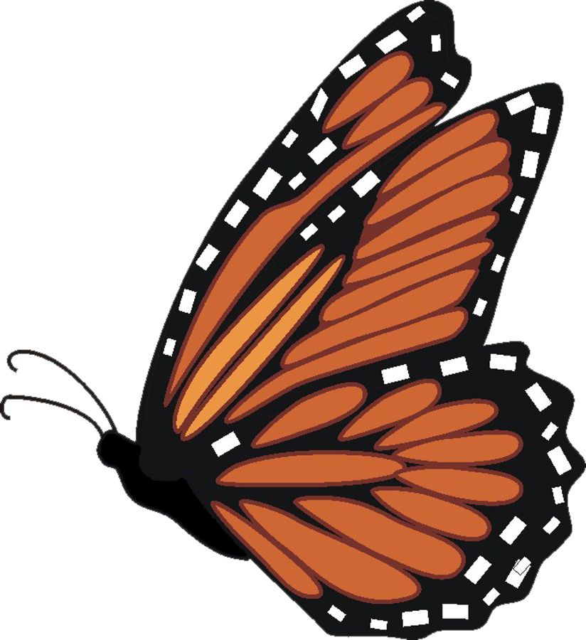 svg freeuse download Monarch clipart. Butterfly side free on.