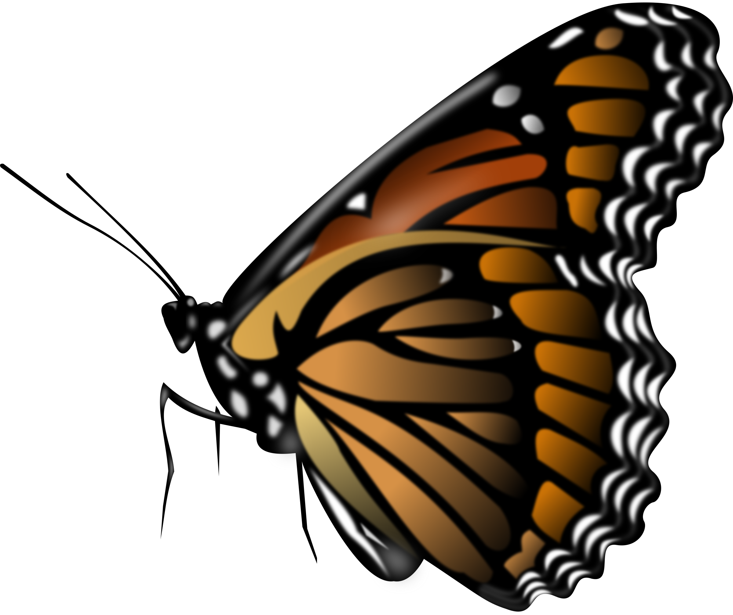 svg black and white download Butterfly. Monarch clipart.