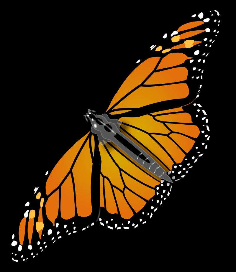 svg download  butterfly clip art. Monarch clipart bengali.