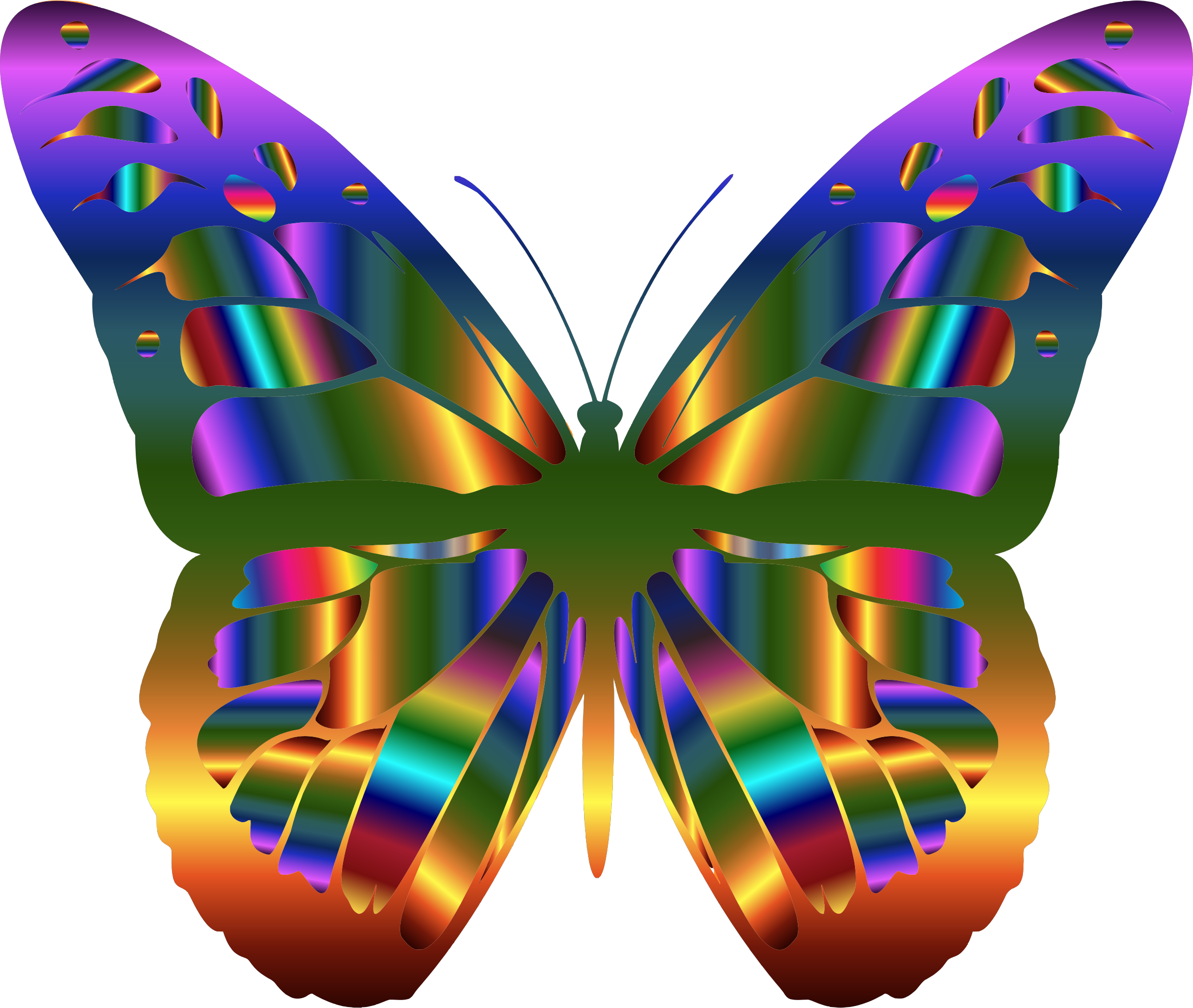 picture library download Iridescent butterfly big image. Monarch clipart bengali.