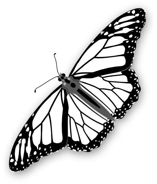freeuse Butterfly bw clip art. Monarch clipart butter fly.