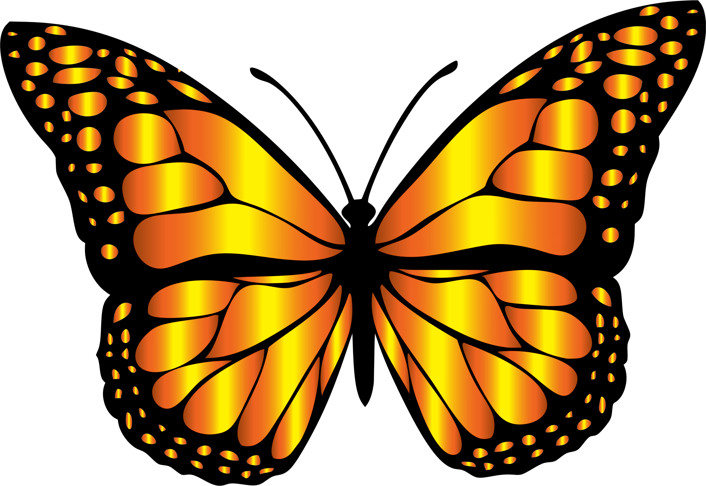 graphic black and white library Monarch clipart butter fly. Butterfly variation big image.
