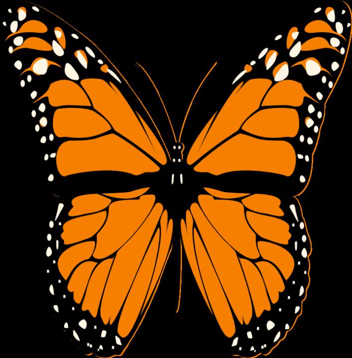 vector free Monarch clipart butter fly. Butterfly clip art pinterest.