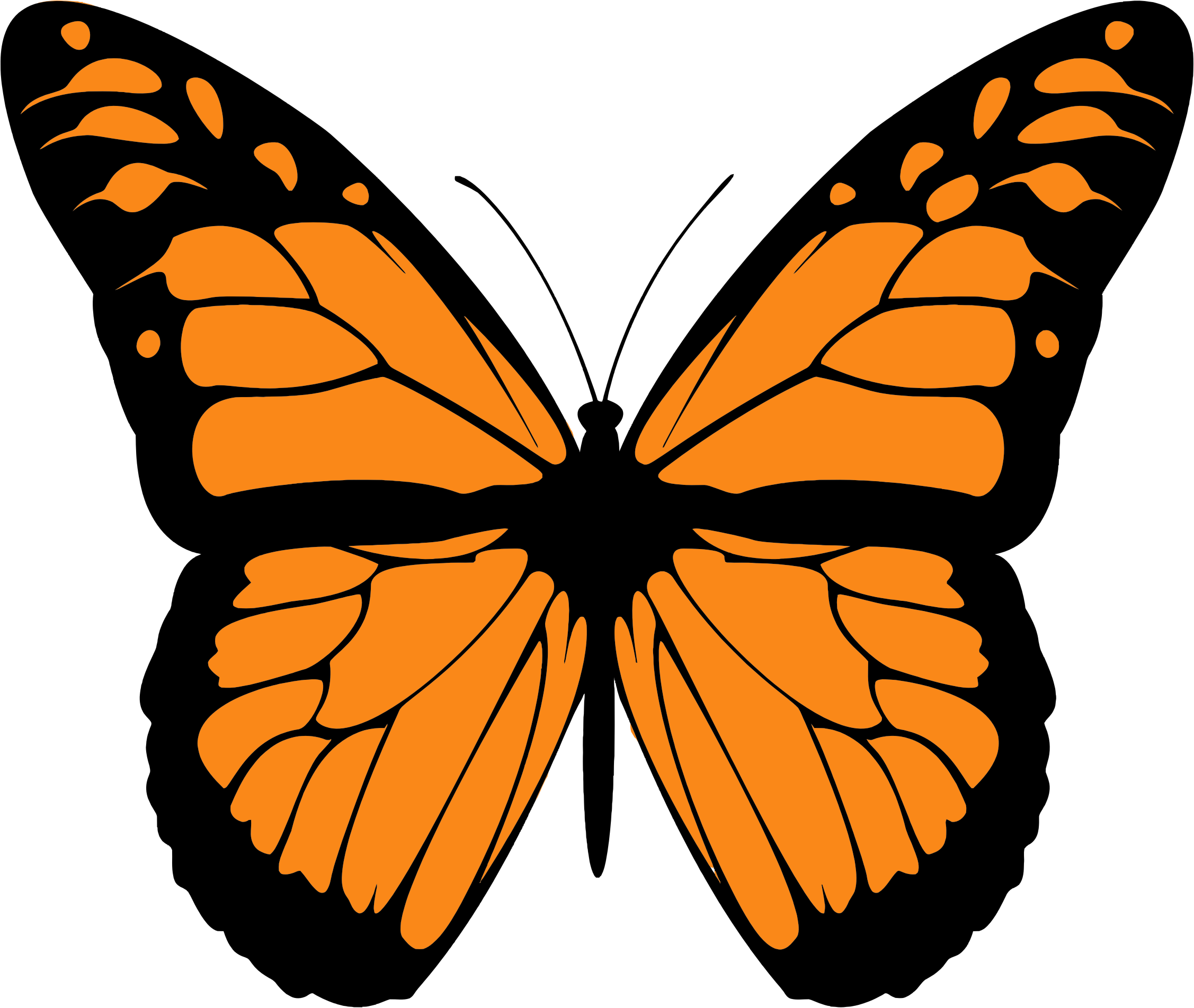 clip art library stock Monarch clipart butter fly. Butterfly big image png.