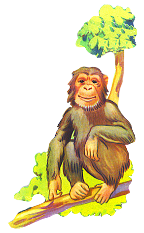 graphic black and white stock Ape clipart tree. Funny monkey drawings clip