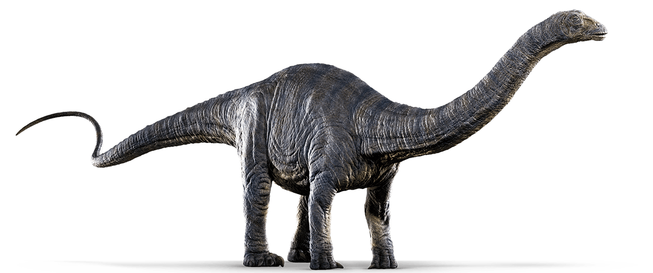 picture free Apatosaurus