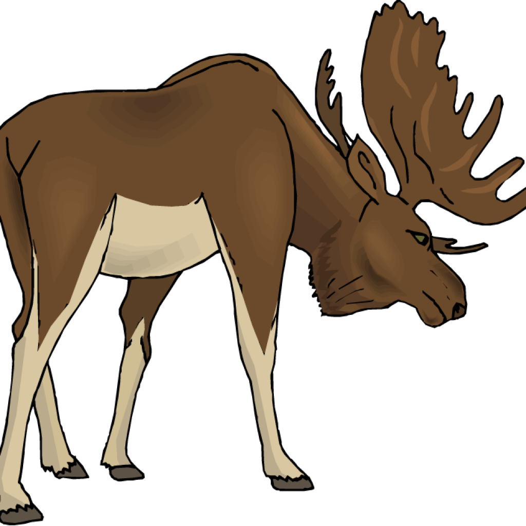 picture black and white download Cartoon at getdrawings com. Moose clipart.