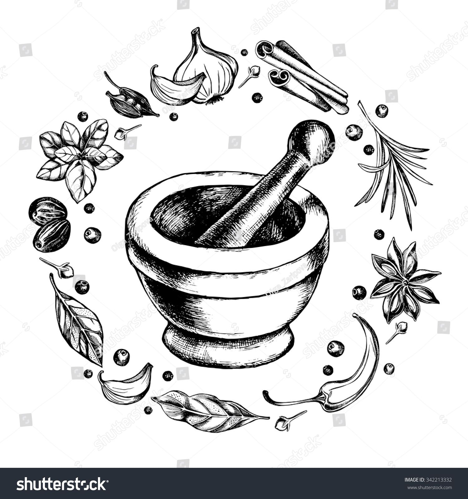 image freeuse library With herbs black white. Mortar and pestle clipart vintage medical.