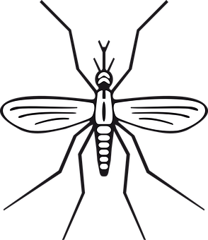 png black and white Mosquito clipart angry. Transparent background free on.