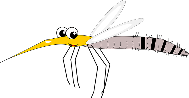clip art royalty free Mosquito clipart scratch skin. Is the zika virus.