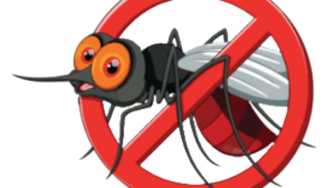png free Mosquito clipart scratch skin. First aid for bites.