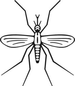 image library Mosquito clipart. Clip art images panda.