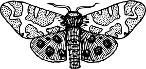 clipart royalty free download Moth clipart. Wings open clip art