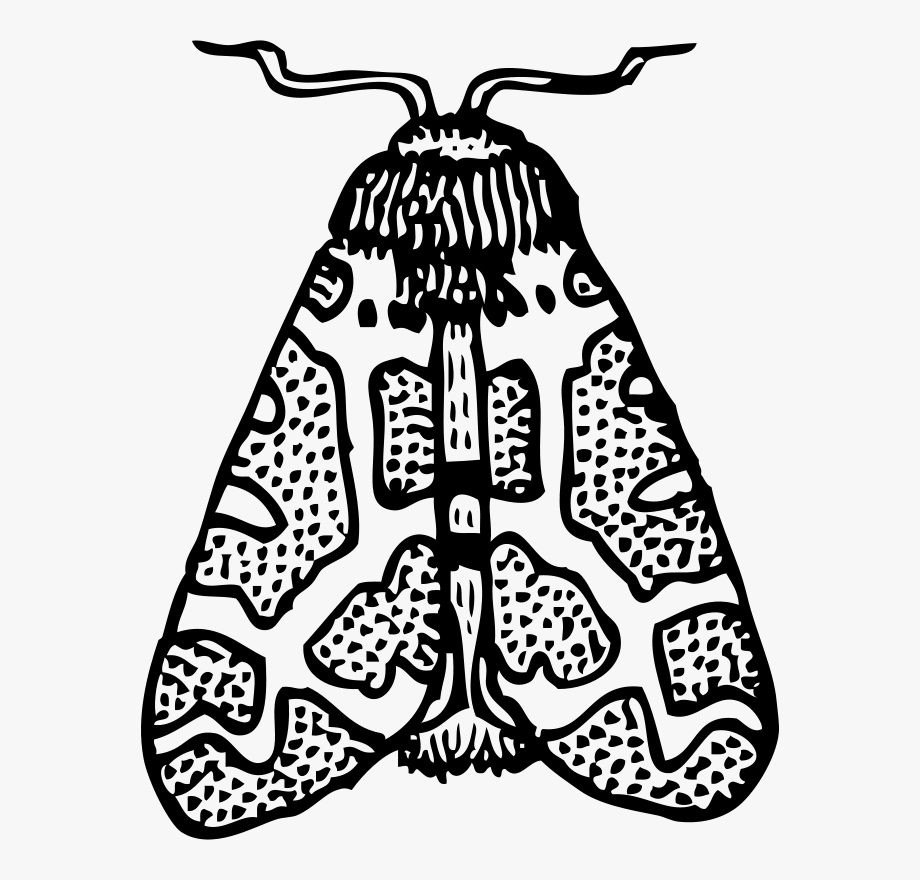 black and white stock Transparent cartoon free . Moth clipart black and white.