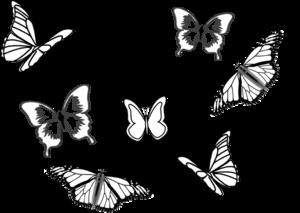 clip freeuse Moth clipart butter fly. Eight butterflies clip art.