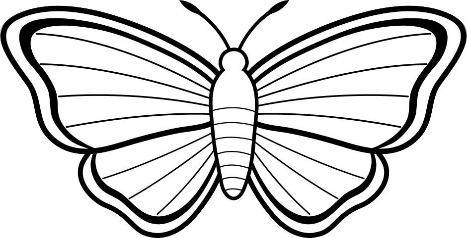 picture freeuse stock Moth clipart insect. Clip art free on.