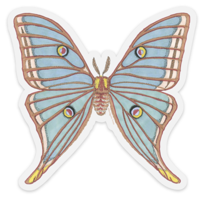 clip library download Clear Vinyl Spanish Moon Moth Sticker
