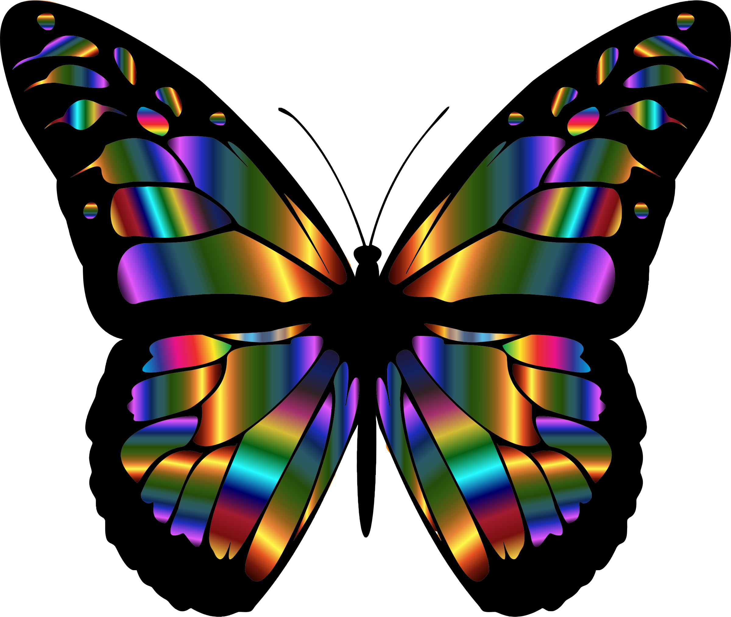 vector freeuse library Iridescent Monarch Butterfly by