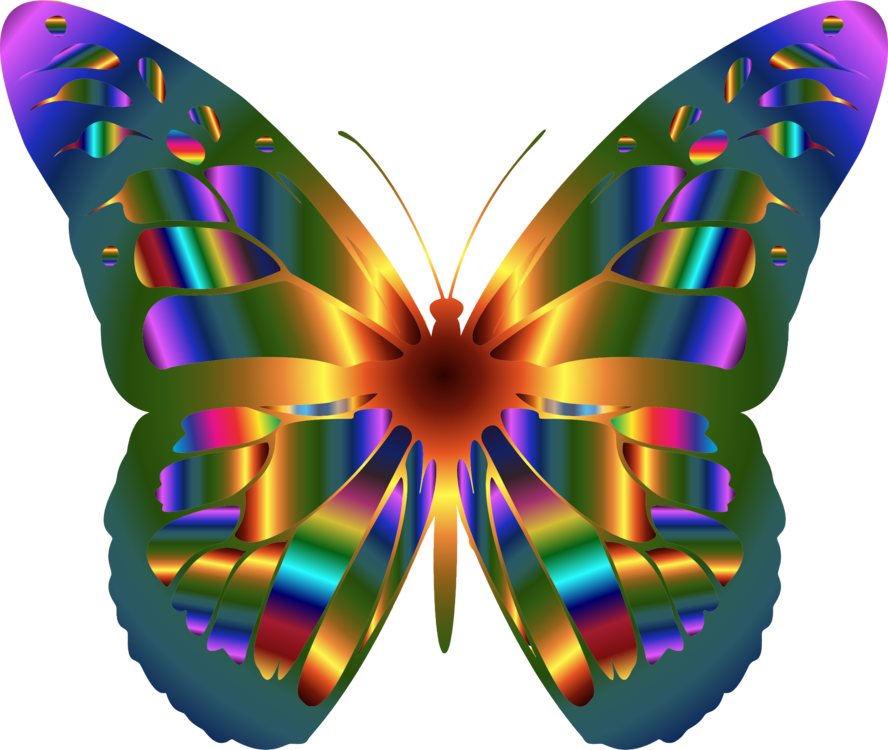 clipart black and white library Moth transparent iridescent. A butterfly butterflies insects