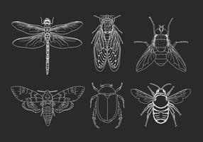 graphic royalty free library Free art downloads . Moth vector