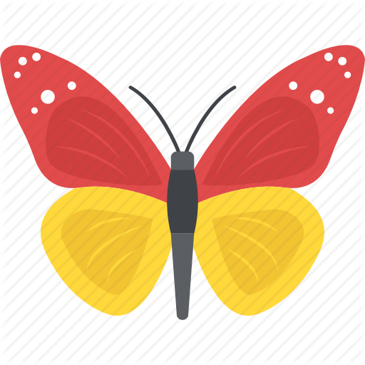 transparent library Moth vector. Nature by vectors market