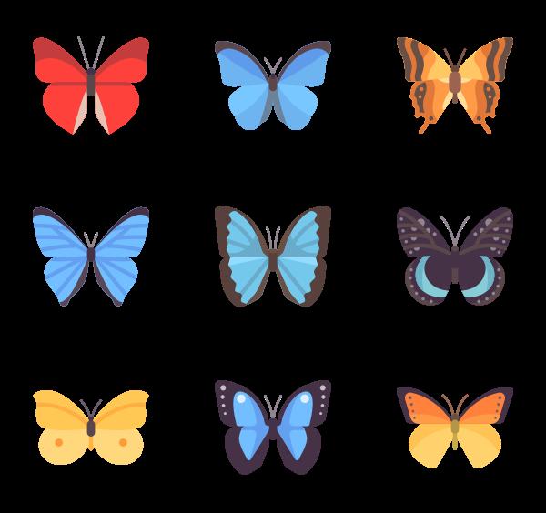 clip art Moth Icons