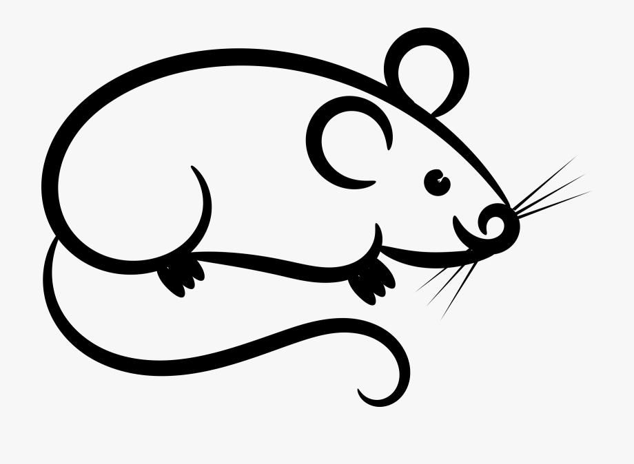 vector free Mouse clipart. Rat white clip art.
