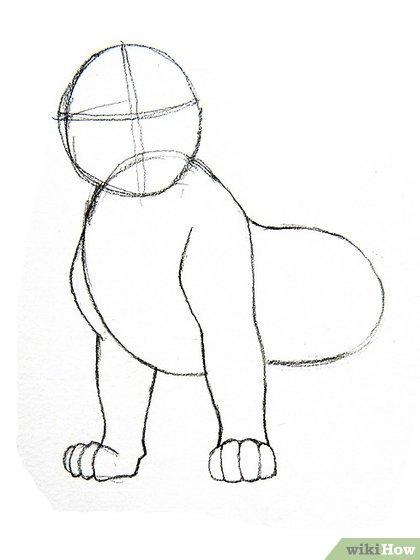 image free How to draw steps. Mufasa drawing head