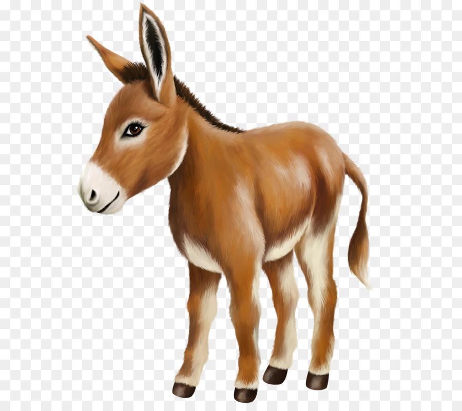 clip art freeuse stock Mule clipart brown. Horse cartoon donkeys wildlife.