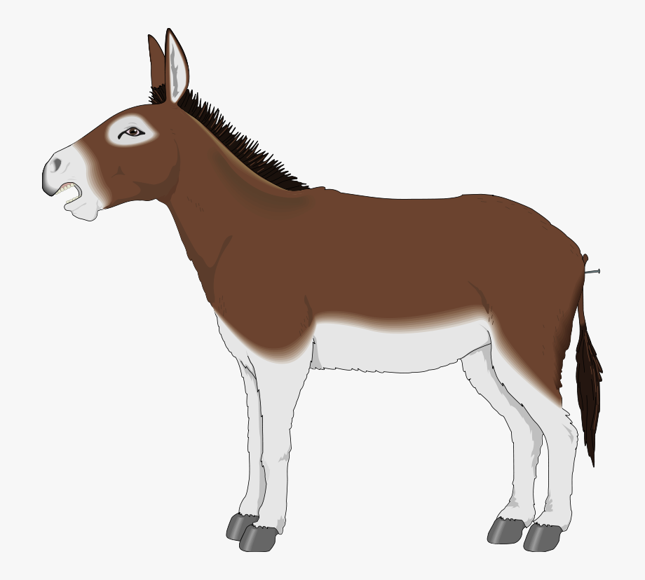banner freeuse download Mule clipart donkey tail. Free cliparts on .