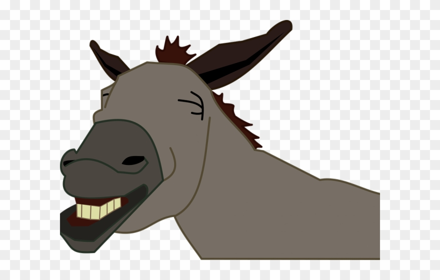 vector free library Jackass head donkey png. Mule clipart face.