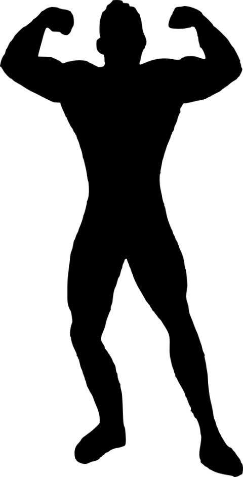 banner royalty free stock Man bodybuilder png free. Muscle clipart silhouette.