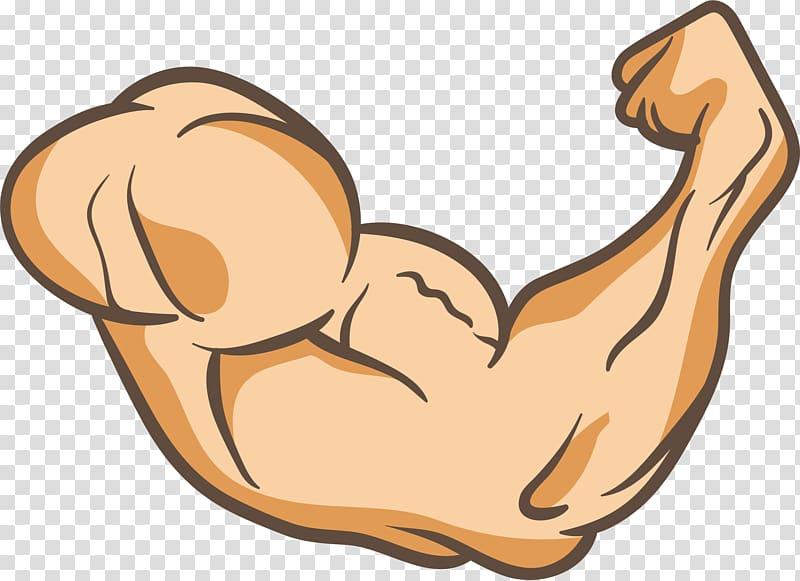 clipart transparent stock Flexing arm muscles sticker. Arms transparent