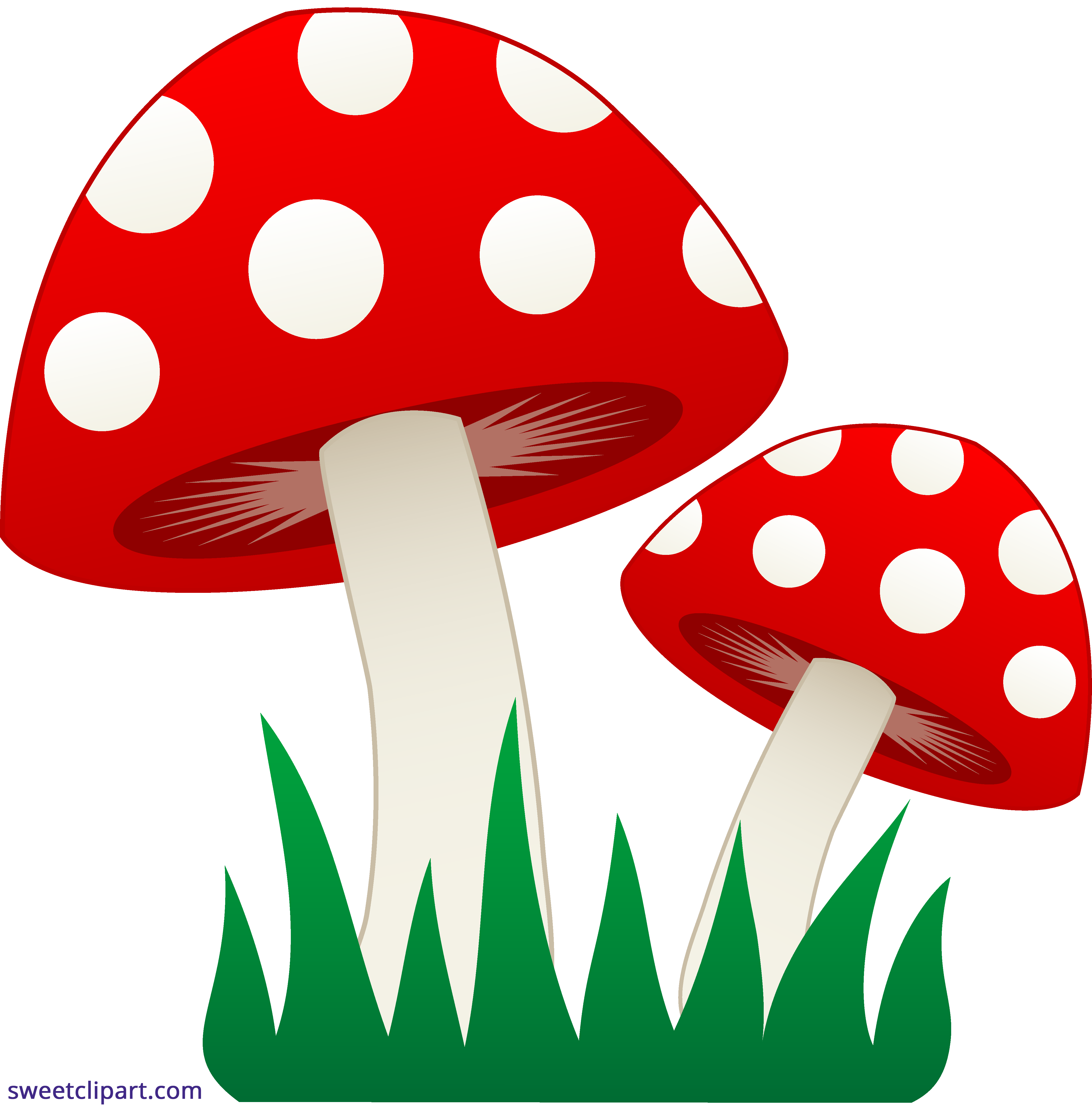 vector library In grass sweet clip. Mushrooms clipart
