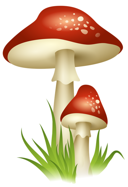 picture library Mushrooms transparent png picture. Mushroom clipart agaricus.