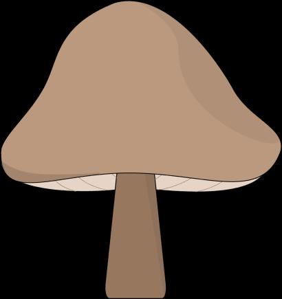 vector transparent download Mushroom bing images pinterest. Mushrooms clipart.