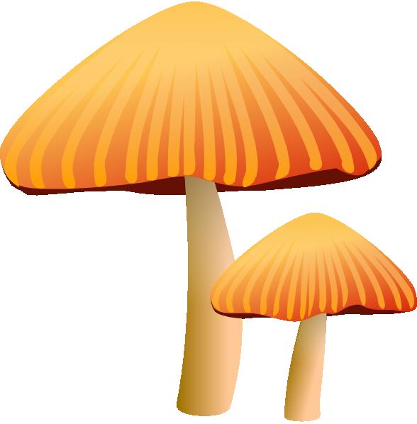 vector free Mushrooms clipart orange mushroom. Rockraikar clip art at.