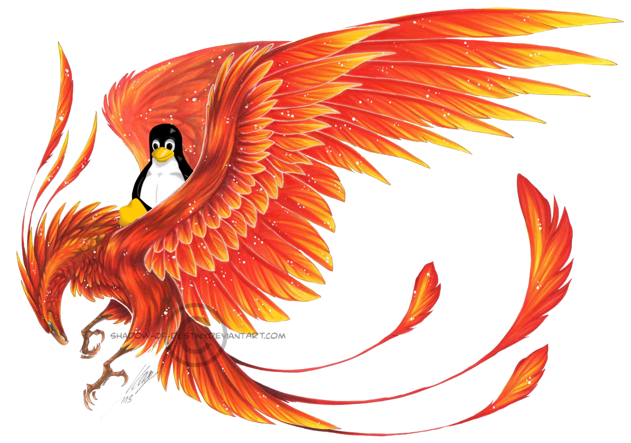 vector transparent stock mythical drawing phoenix #100126370
