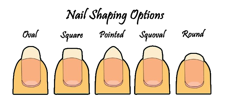 image royalty free library Nail Shapes to Suit Your Career