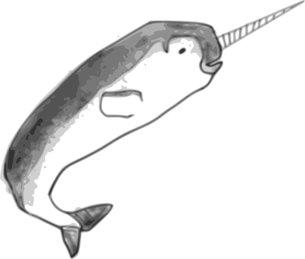 image black and white library Clip art at clker. Narwhal clipart
