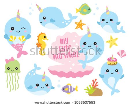 banner library Pin on . Narwhal clipart vector.