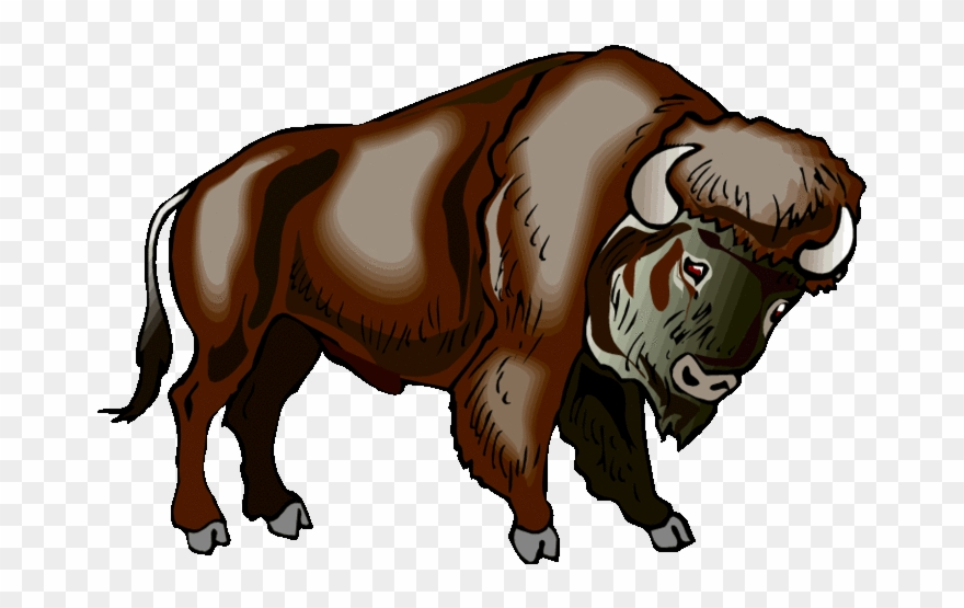 graphic transparent download Buffalo . Native american clipart american bison.
