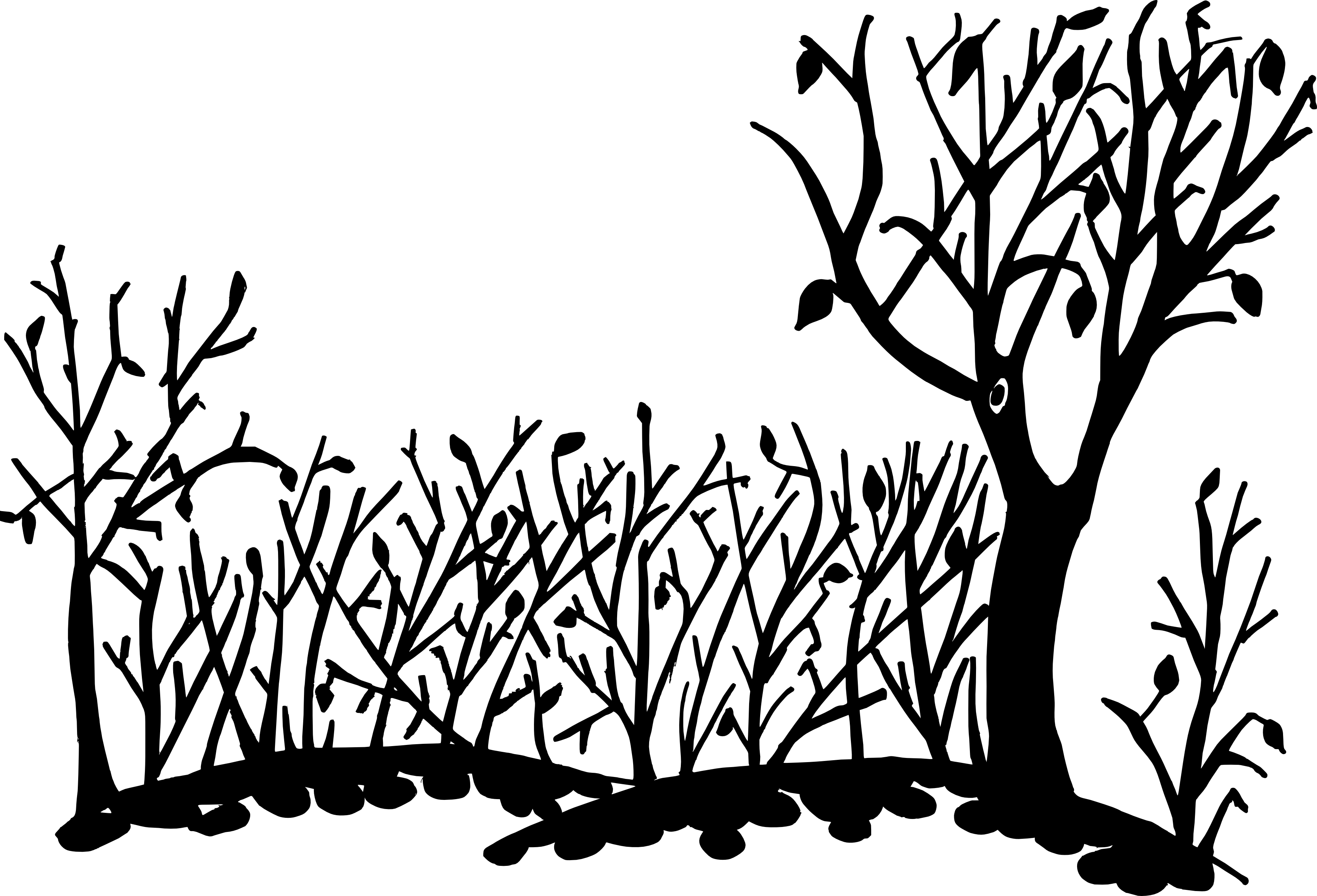 svg black and white Nature Background Drawing at GetDrawings