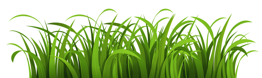 clip freeuse Png free images toppng. Nature clipart.