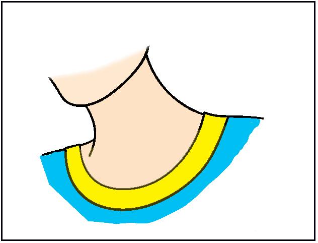 banner freeuse download Neck clipart. Free download on webstockreview.