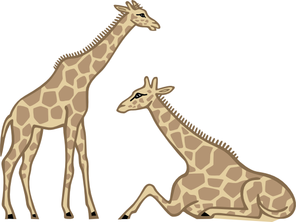 png royalty free library Giraffes clip art at. Neck clipart giraffe.