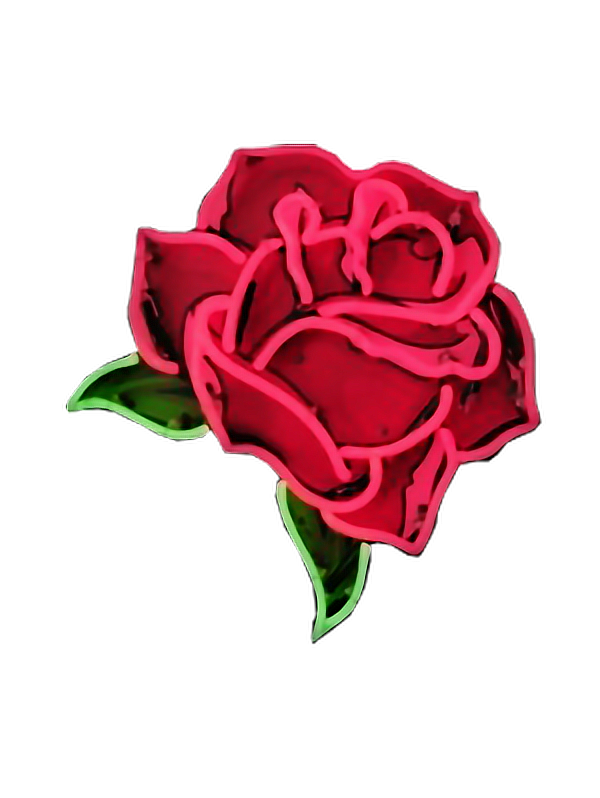 picture black and white library Rose flower neon Rosa rojo flor