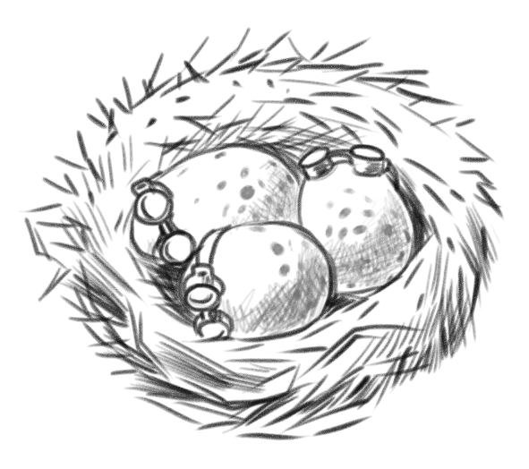 png transparent stock Nest black and white clipart. Donate the vermont complex