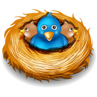 graphic transparent download Nest clipart. Download free png photo.