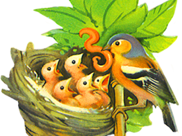image free library Nest clipart cute. Free on dumielauxepices net.